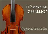 Special Konzert Violine Geige in 4//4 mit Zubehör