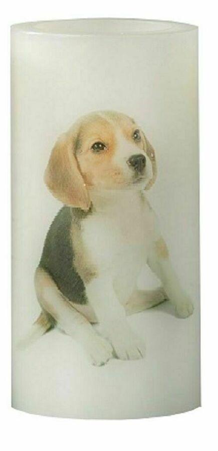 1x LED Paraffin Kerze Hundewelpe Beagle Welpe Hunde Beleuchtung Hund Motiv 15838