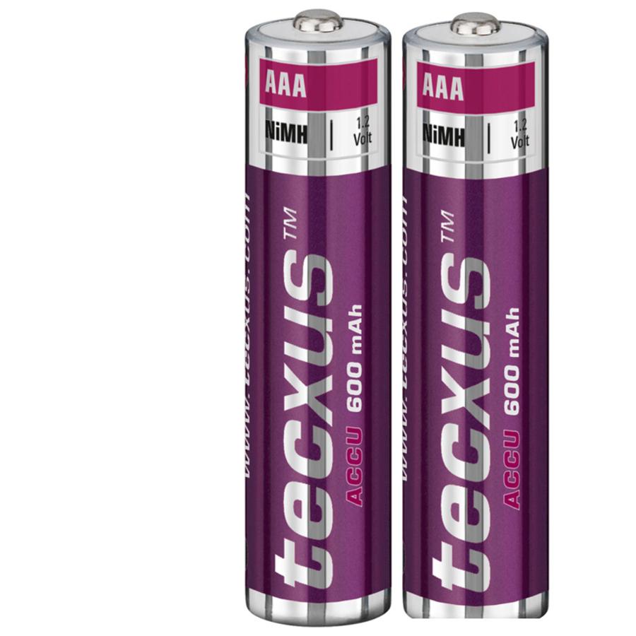 2 x Tecxus Akkus Accus AAA Micro 600 mAh NiMH 1,2V aufladbare Telefon Batterien